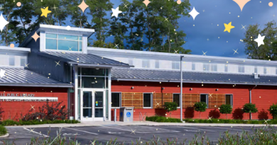 Image of Library with Stars